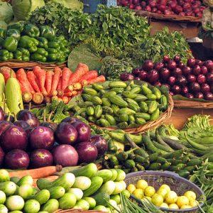 Sunt og grønt vil MDG ha mer av.